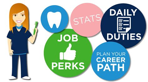 how to become a service how to become a dental hygienist hawaii dental service