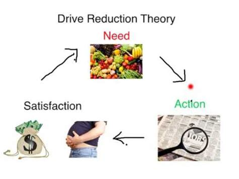 drive reduction theory exle drive theory of motivation youtube