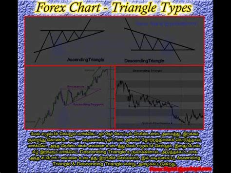 forex tutorial in tamil forex trading training in tamil part 22 my success