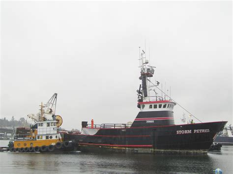 salty boats fremont tugboat company seattle ship canal petrel fishing boat assist