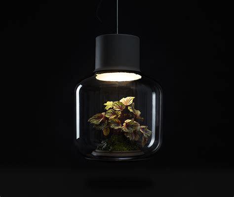 Garten Pflanzen Wenig Licht by Wohnzimmer Pflanzen Wenig Licht Ihr Traumhaus Ideen