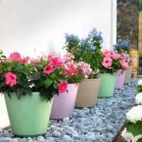 vasi colorati da esterno vasi da giardino ed interno vendita bestprato