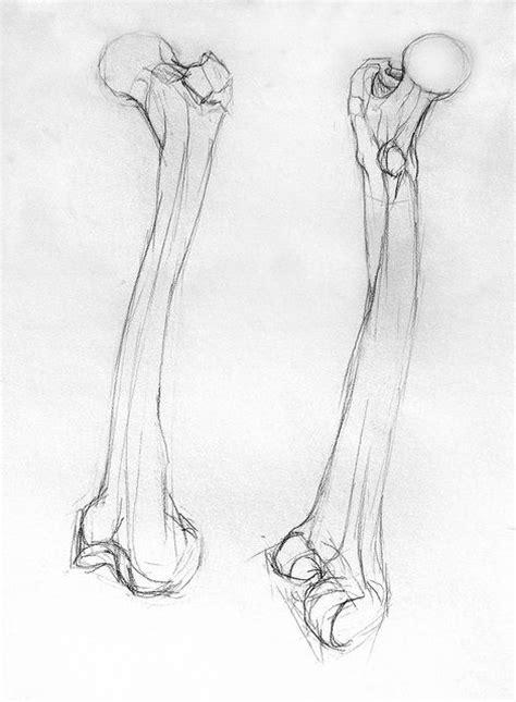bone drawing femur bone drawing by hextall via flickr skulls bones