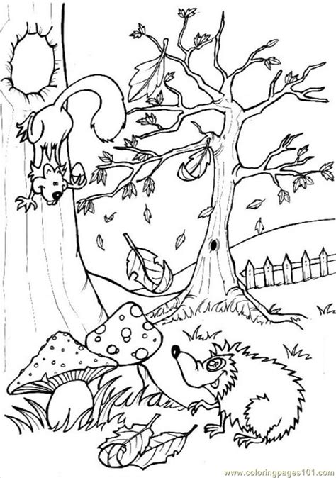 Woodland Animals Coloring Pages woodland animals coloring pages az coloring pages