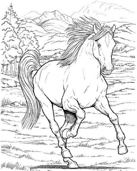 free coloring pages of real horses ausmalbilder pferde 16 kostenlose ausmalbilder zeichnung