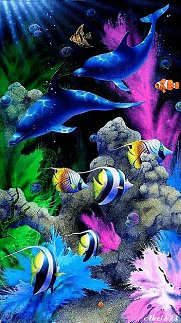 wallpaper colorful fish and interactive water the best 31 wallpapers android by akela73 truly amazing