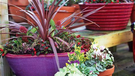 pots for plants glaze outdoor ceramic pots outdoor