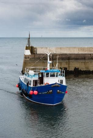 farne islands boat trips prices st curthbert iii dive boat of billy shiel picture of