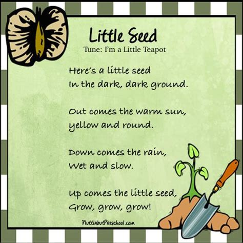 theme songs for kindergarten 12 best gardening theme images on pinterest preschool