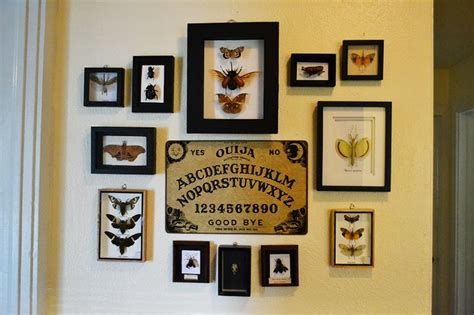 taxidermy home decor blog insect taxidermy vignette home decor and ouija