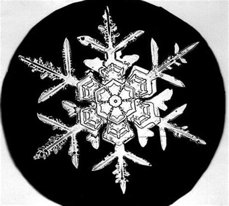 snowflake wilson bentley in pictures the first ever photographs of snowflakes