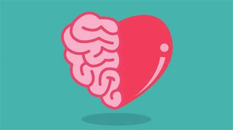 heart and brain an heart vs brain part 2 allen the writer