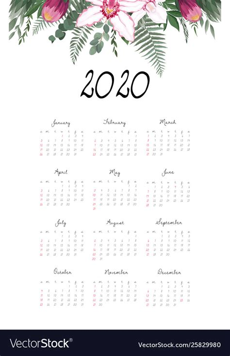 calendar  template  months include holiday vector image