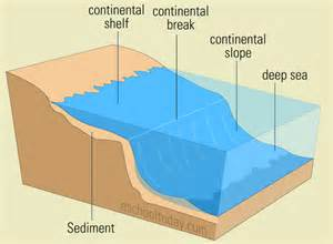 what is the continental shelf landform