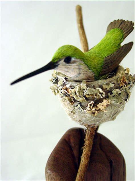 hummingbirds birds in wood