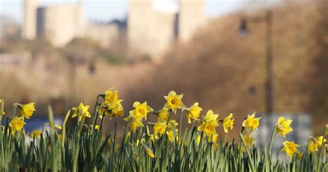spring equinox 2018 when is first day of spring why when is the first day of spring 2018 and what is the