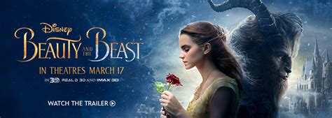 Empty Vase La Beauty And The Beast Disney Princess Disney Store