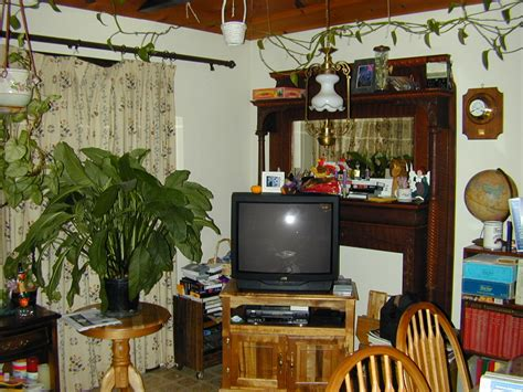 home decor plants living room best of home decor plants living room