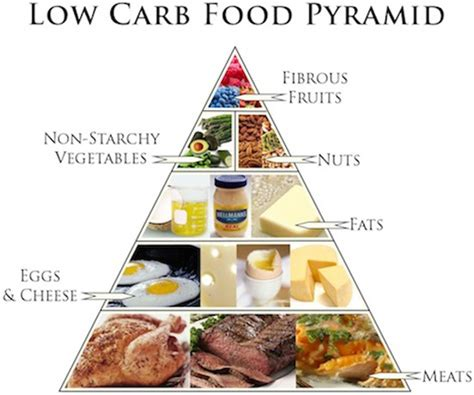 low protein food health professions council warns against high protein low carb diet my course