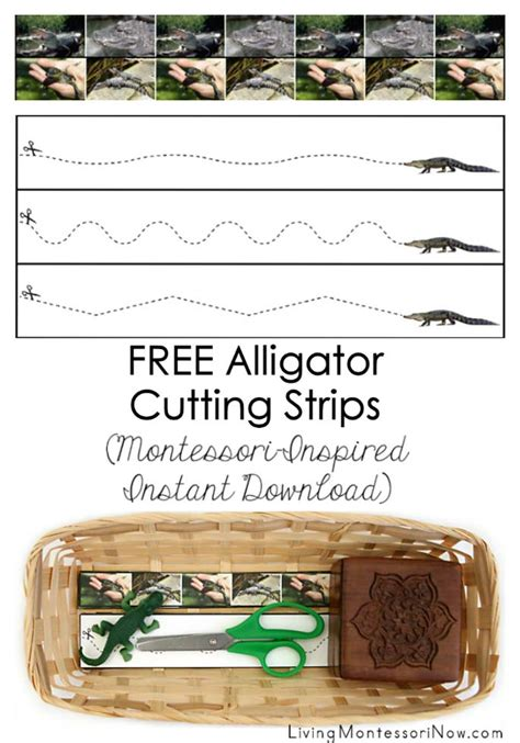 printable montessori cutting strips free alligator cutting strips montessori inspired instant