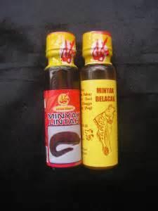 Minyak Enlargement trial packs leech mudskipper for