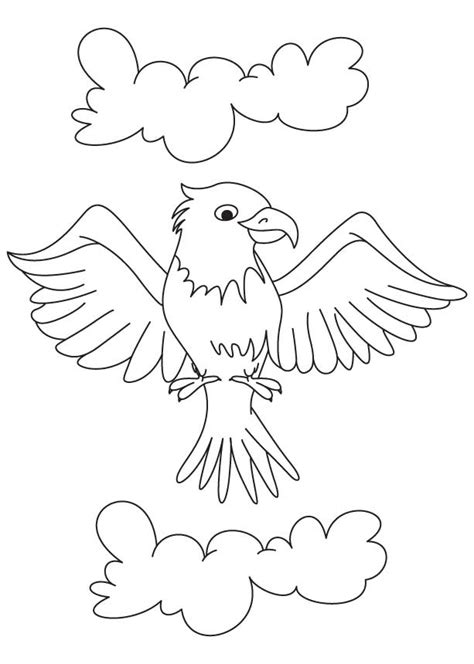 eagle wings coloring page eagles wings coloring page