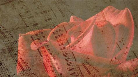 rose musik noten kostenloses bild auf pixabay