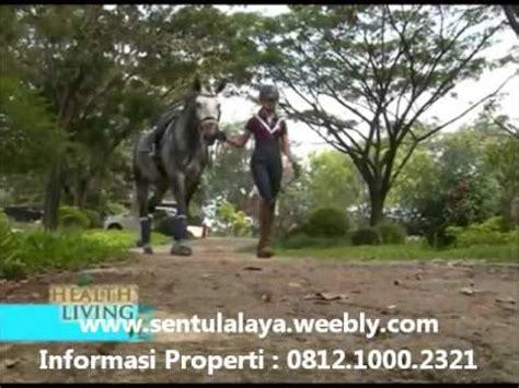 Sho Kuda Di Bogor rekreasi berkuda di sentul alaya sentul city bogor polo