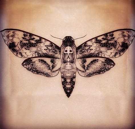death moth tattoo 23 best images about tattoos on