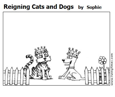 reigning cats and dogs search results the times