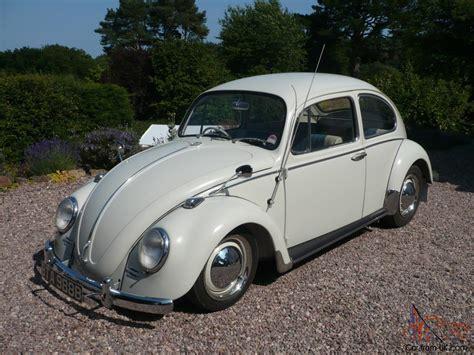 volkswagen white beetle 1964 volkswagen beetle pearl white