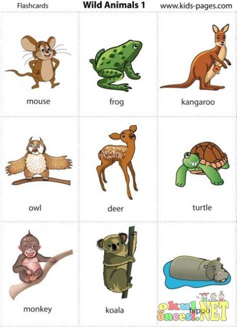 vahsi hayvanlar flash kartlar okul oencesi okul oencesi etkinlikleri ana okulu