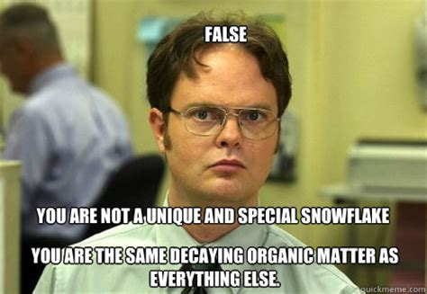 Personalized Meme - false you are not a unique and special snowflake you are