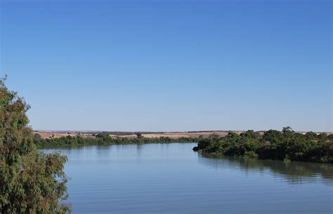 the lower river murray river wikipedia