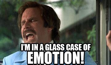Glass Case Of Emotion Meme - sixone in heels dog daze