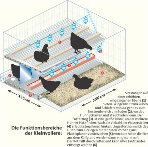 Sitzstangen Für Hühner Selber Bauen 5477 antispe de pressespiegel lecker veganismus