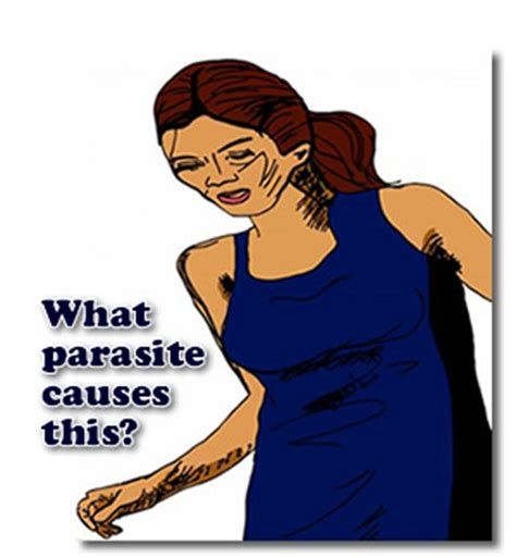 Parasite Detox Feeling Things Moving Around by What Parasite Causes These Symptoms