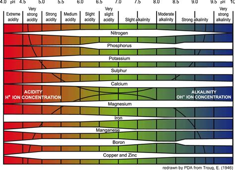 pH Balance and Plants in Hydroponics   THE BLOG