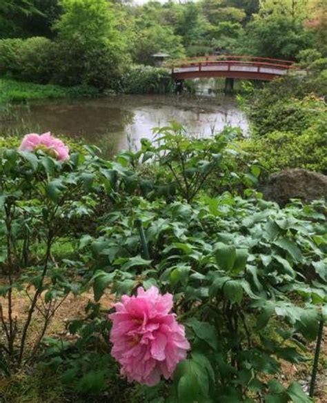 Tsukuba Wanwan Land All You Need To Know Before You Go Tsukuba Botanical Garden