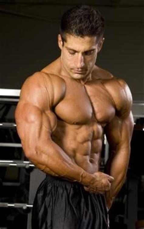 best bodybuilding site the top bodybuilders exercise biology