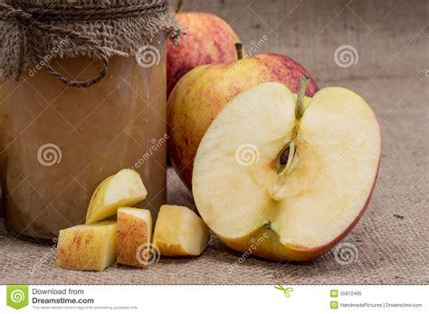 fruty u applesauce fresh made applesauce royalty free stock photo image