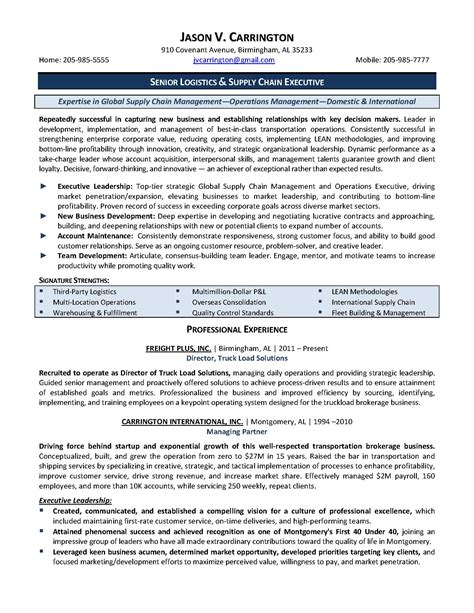 Sample Resume Objectives Information Technology by Resume Samples Elite Resume Writing