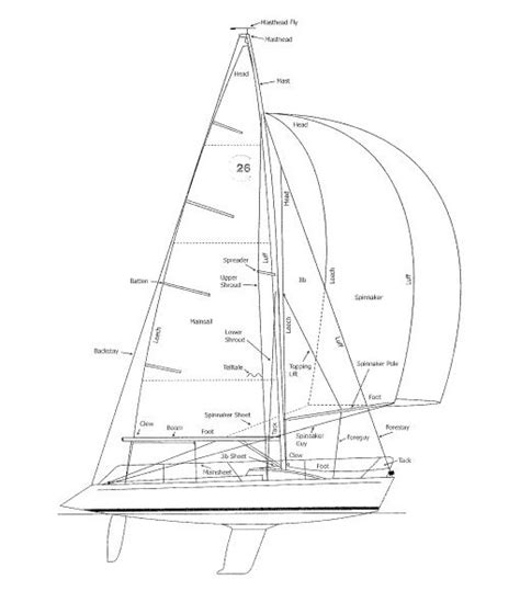 catamaran drawing architectural sailboat drawings google search reid s