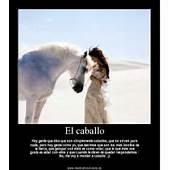 Sunday'sSpecialGuest &191Qu&233 Es Un Caballo  Carmina Baker Loves