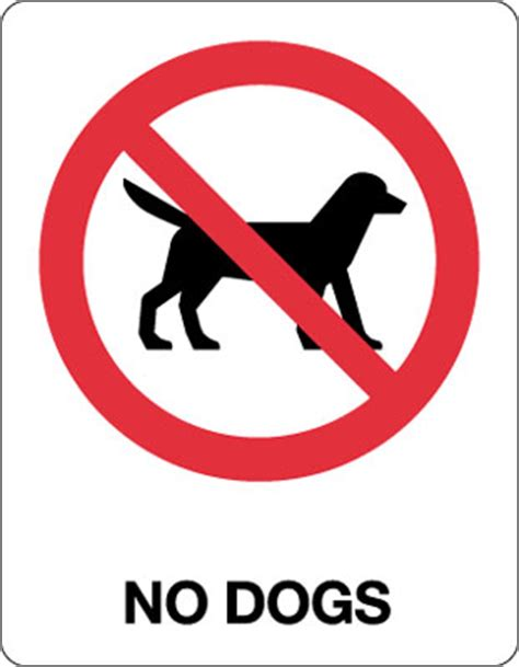 no puppies no dogs