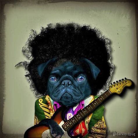 black pug painting 25 best ideas about pug dogs on pugs pug pictures and pug