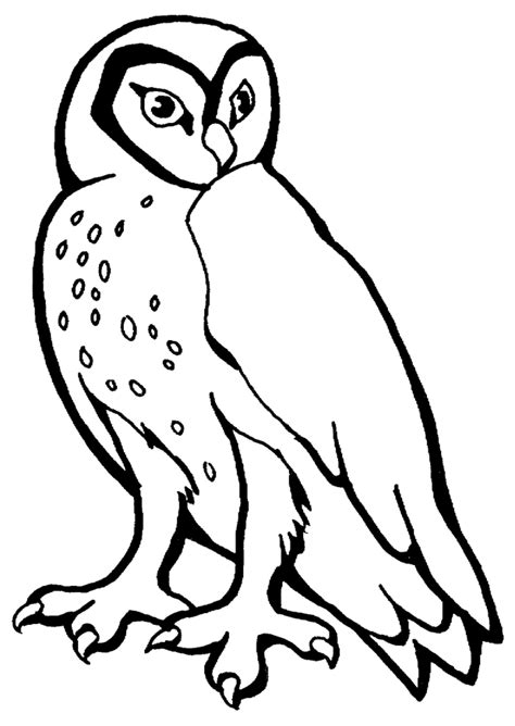 harry potter coloring pages owl free coloring pages of harry potter hedwig owl