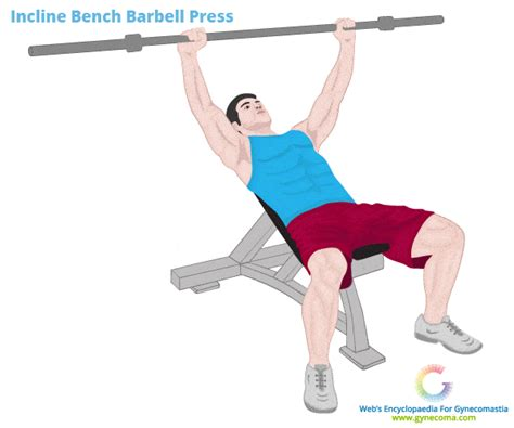 incline bench workouts pseudogynecomastia causes diagnosis treatment options