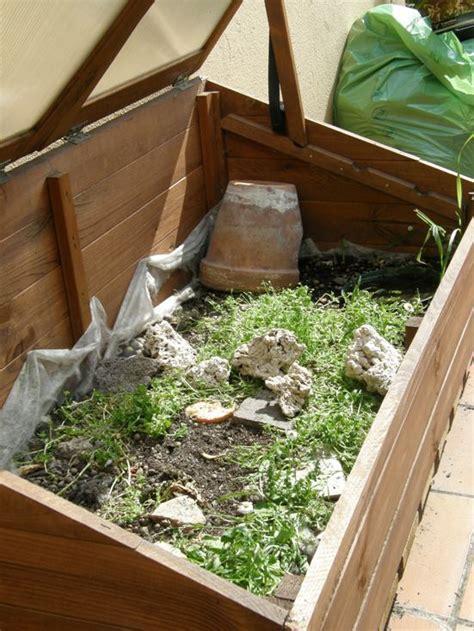 gabbia per tartarughe di terra tartarughe in terrario artigianale