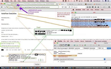 html javascript guided snake game drag and drop tutorial server unexpectedly closed network connection filezilla
